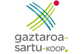Praktikak Gaztaroa Sartu enpresan.